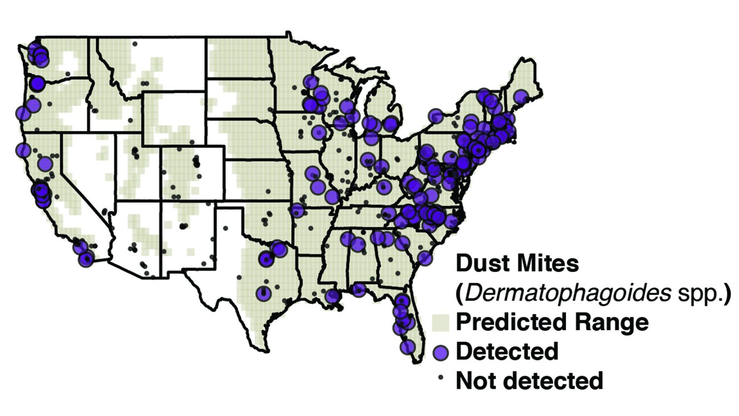 Map of US with dust mite concentrations