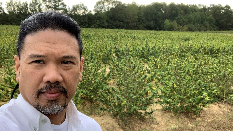 Rod standing in a field of hemp