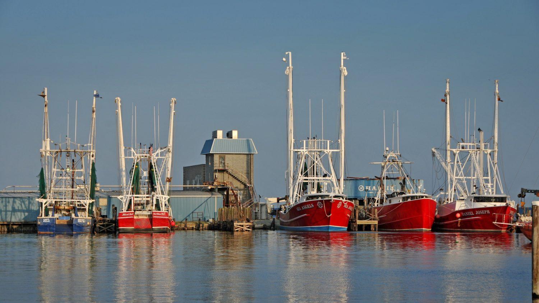 image of shrimp boats