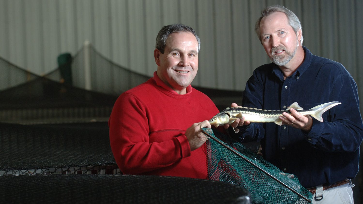 Aquaculture extension and research