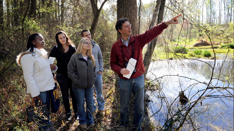 Undergraduate ecology