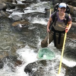Bonnie Myers electrofishing in Puerto Rico.