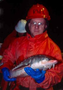 Dr. Wilson Laney with an Atlantic sturgeon. Picture by Gary Caputi of Saltwater Sportsman magazine.