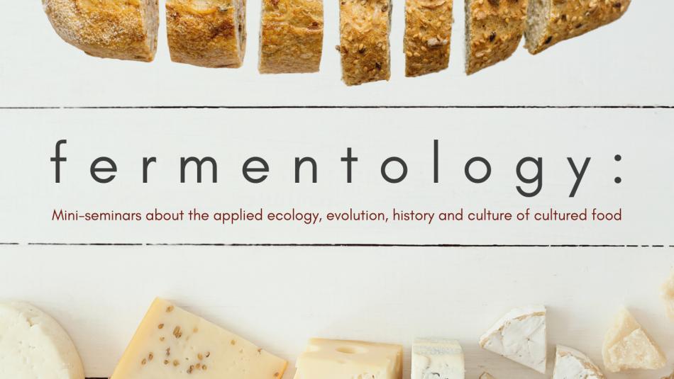 https://cals.ncsu.edu/applied-ecology/wp-content/uploads/sites/4/2020/04/fermentology-2-950x535.png
