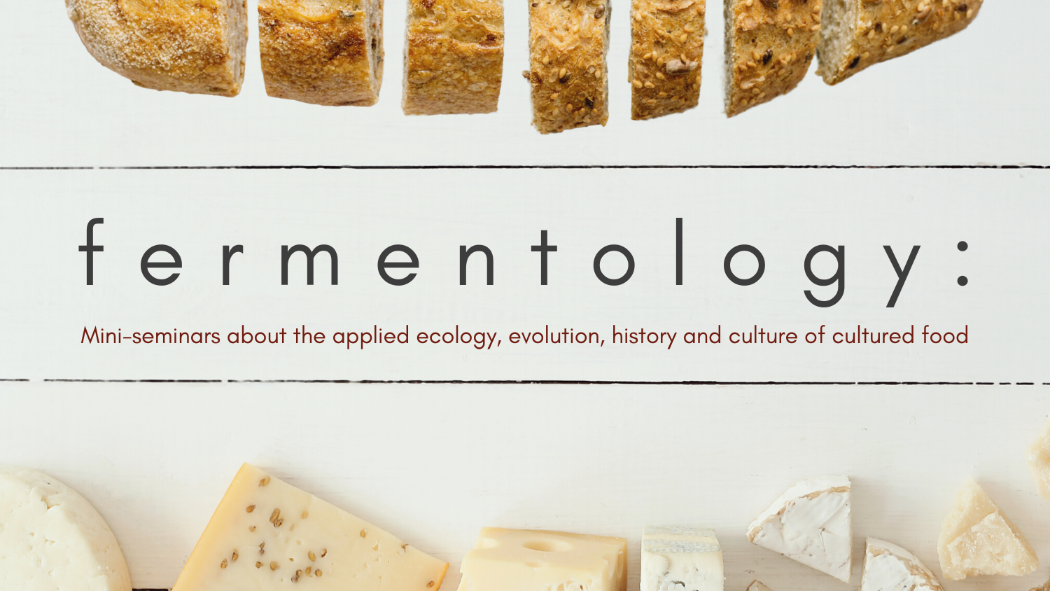 Fermentology mini seminars banner