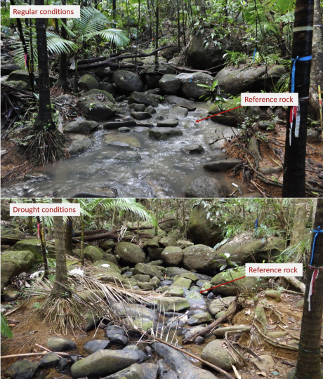 Prieta stream, during an average year (top) and during the 2015 drought (bottom). Photos taken by Pablo Gutiérrez.