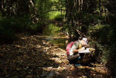 M.Sc. student and author, Samantha Jordt, recording insect egg presence in a stream.