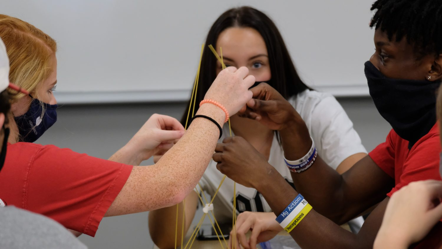 students construct a tower with dried spagetti noodles and marshmallows