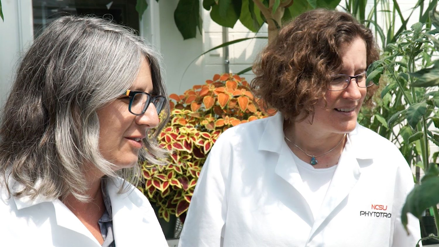 female faculty members in phytotron
