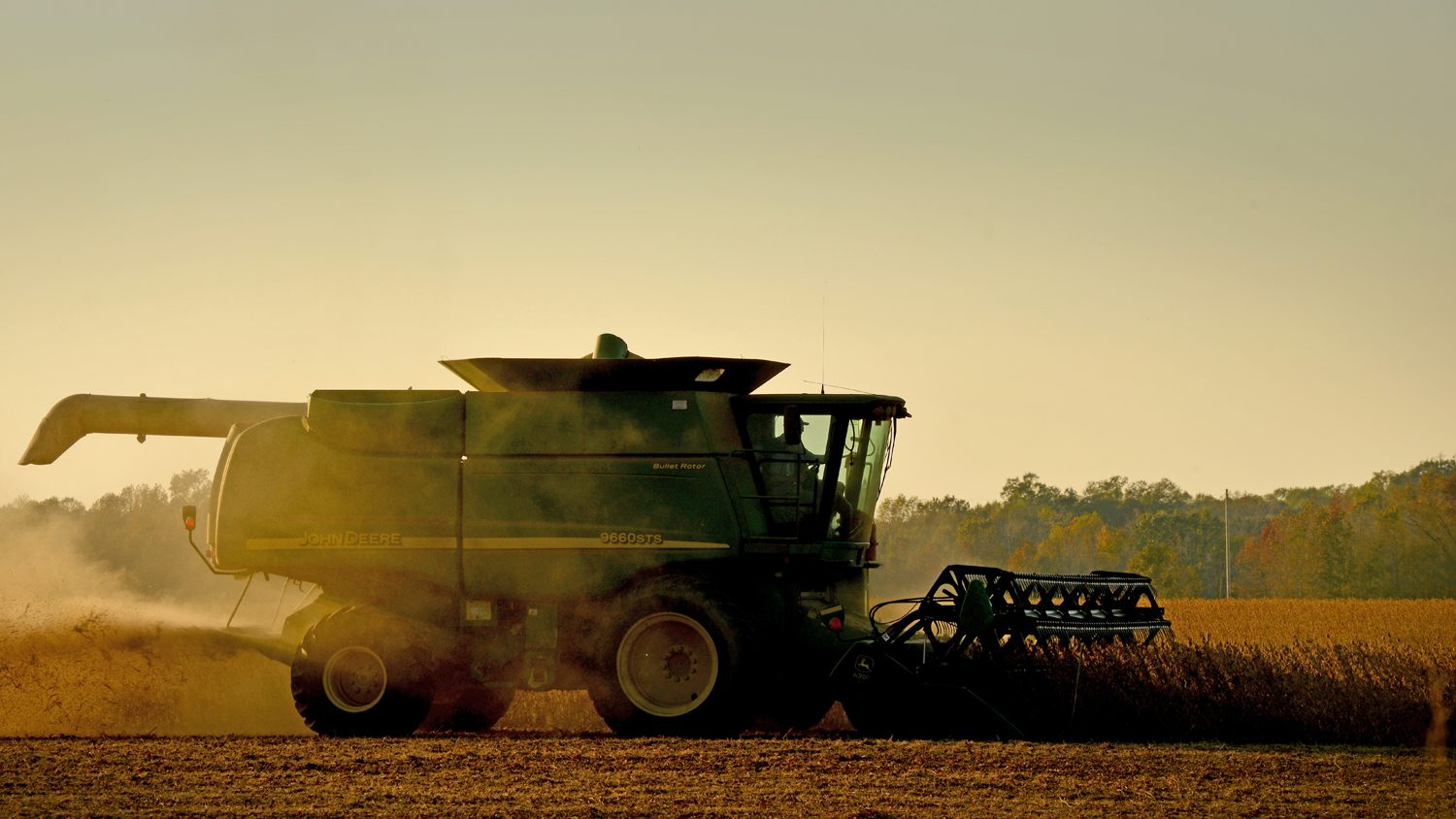 A combine harvesting North Carolina soybeans