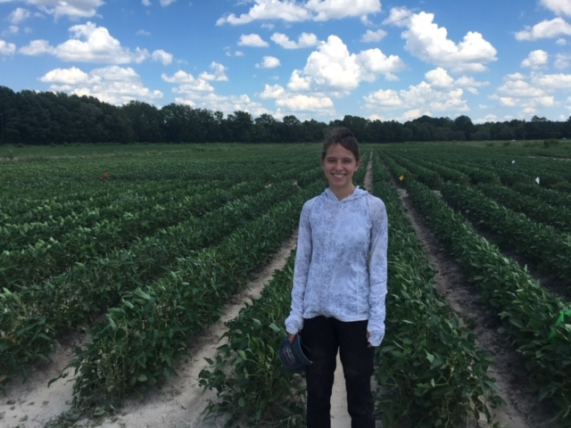 NC State REU Students Used Field Labs for Research