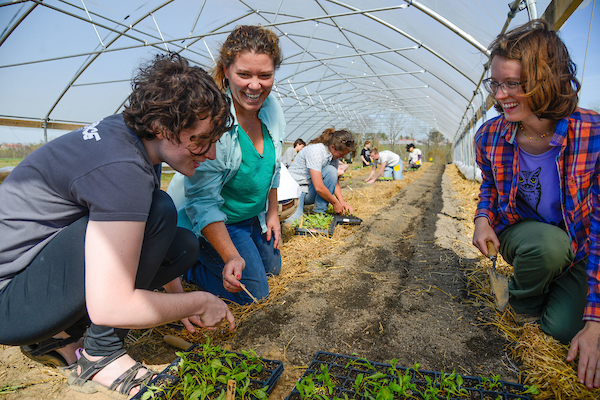 Michelle SChroeder-Moreno teaches agroecology at NC State
