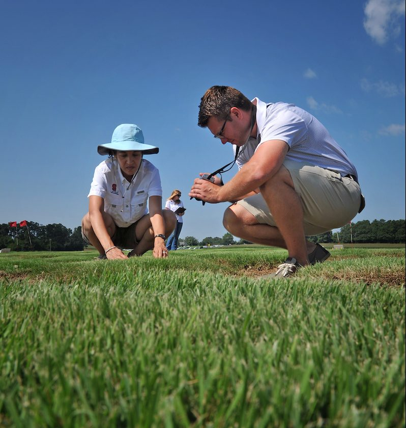 Turfgrass science field work