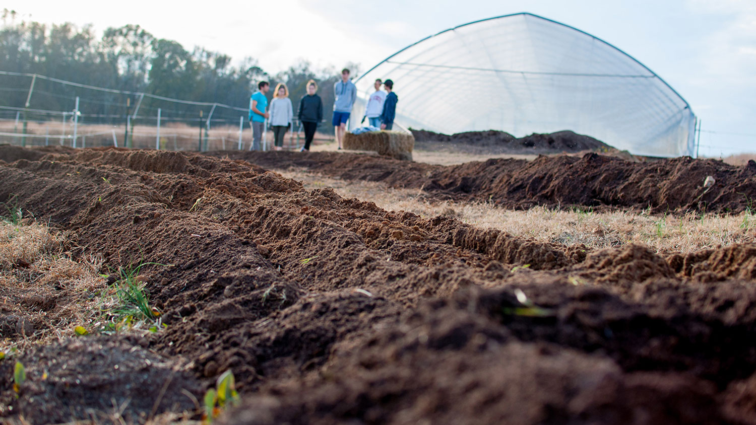 Long shot of a farm with students and greenhouse in the background