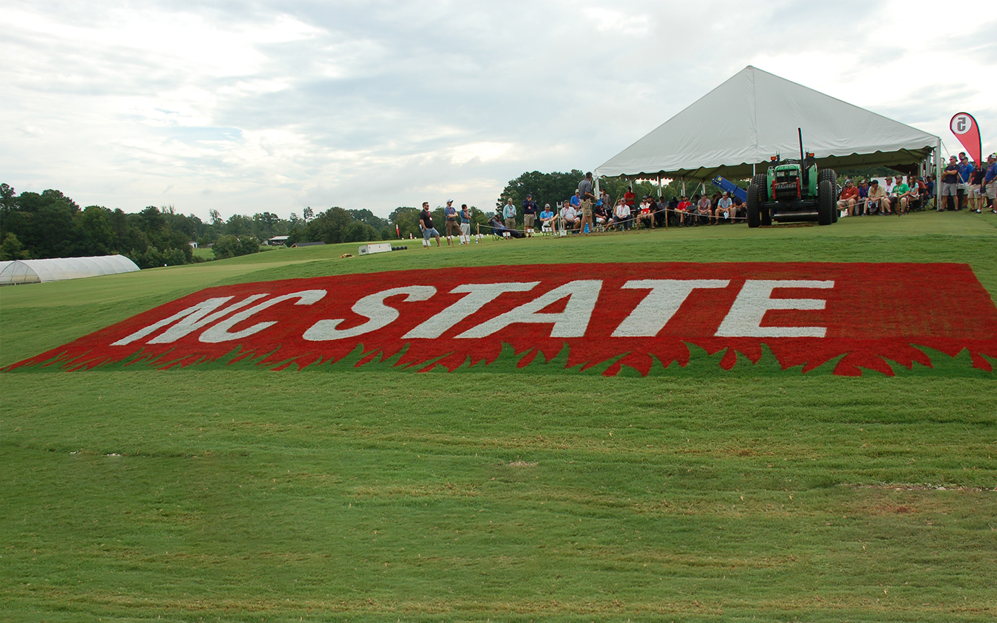 NC State logo on turf