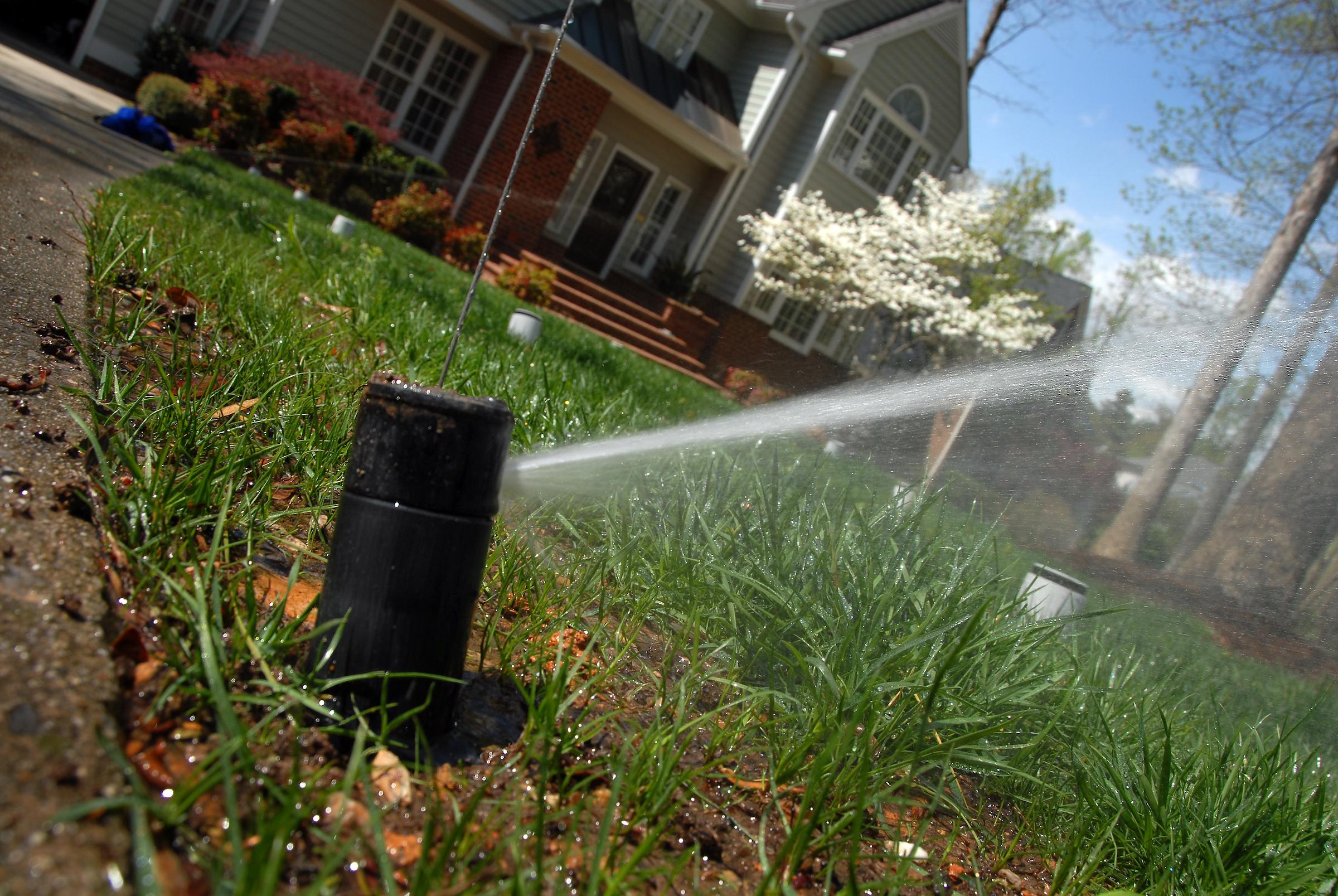 Irrigation head spraying water on lawn