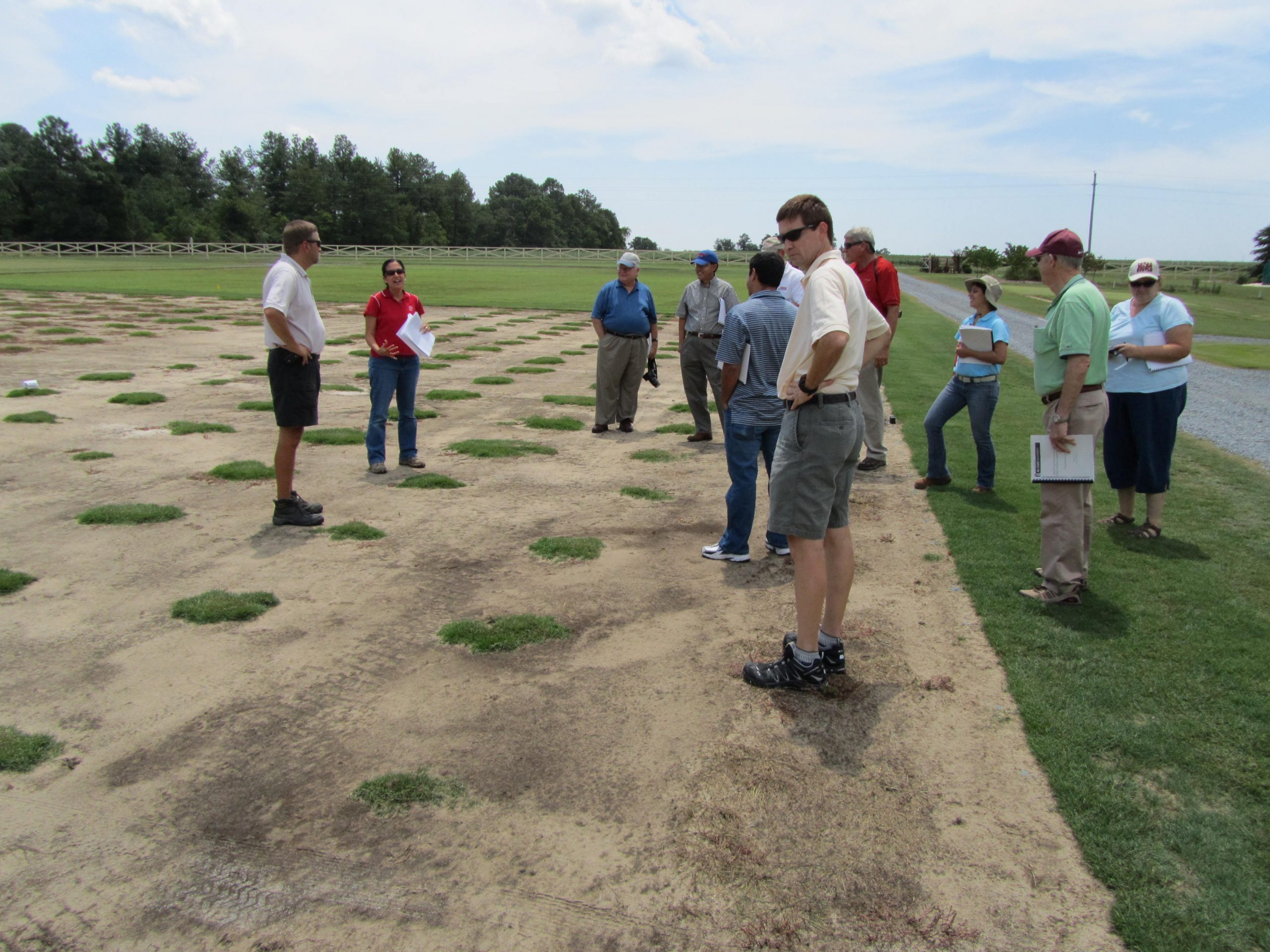 Scientists standing on and looking at grass test plots