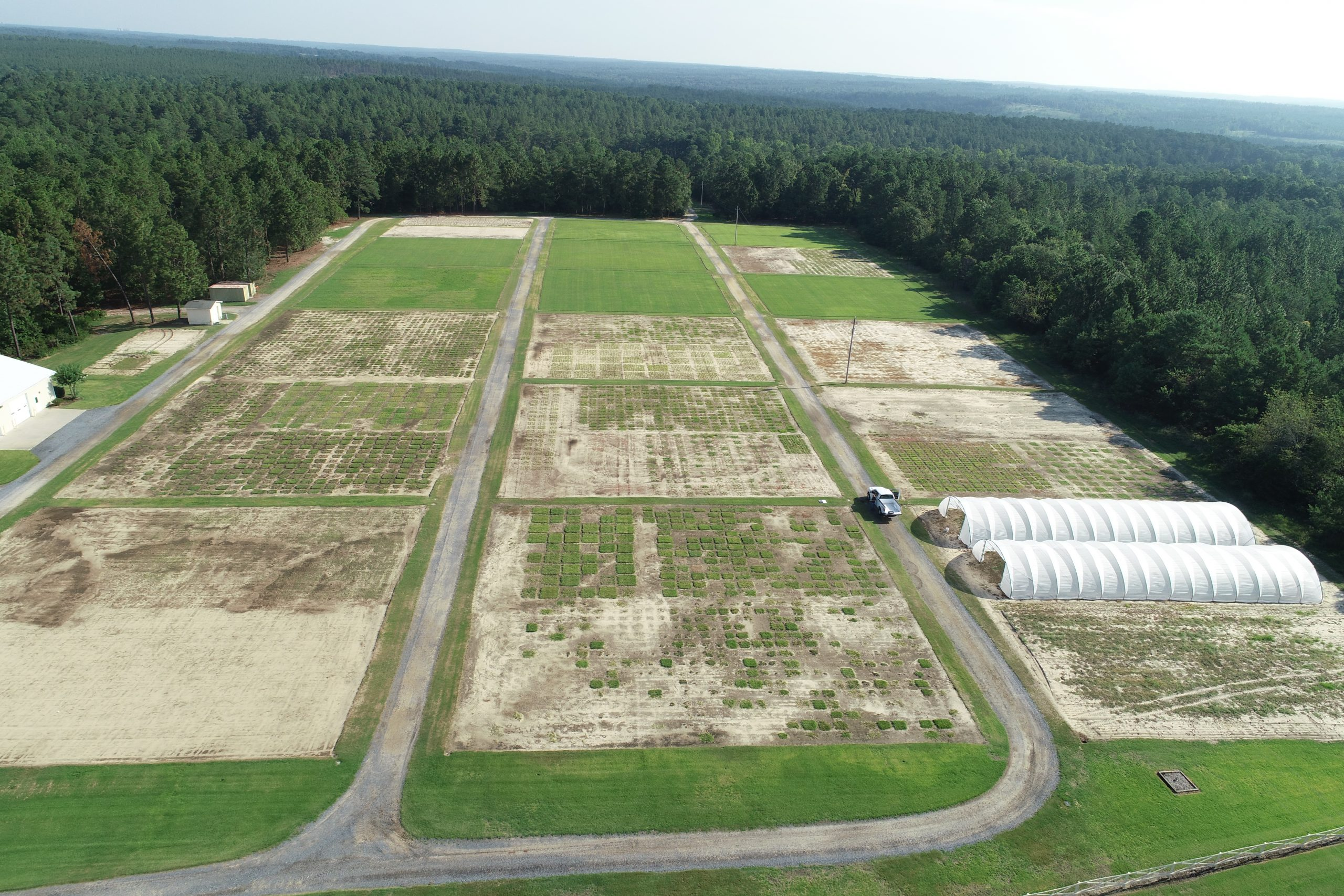 aerial view of turfgrass test plots