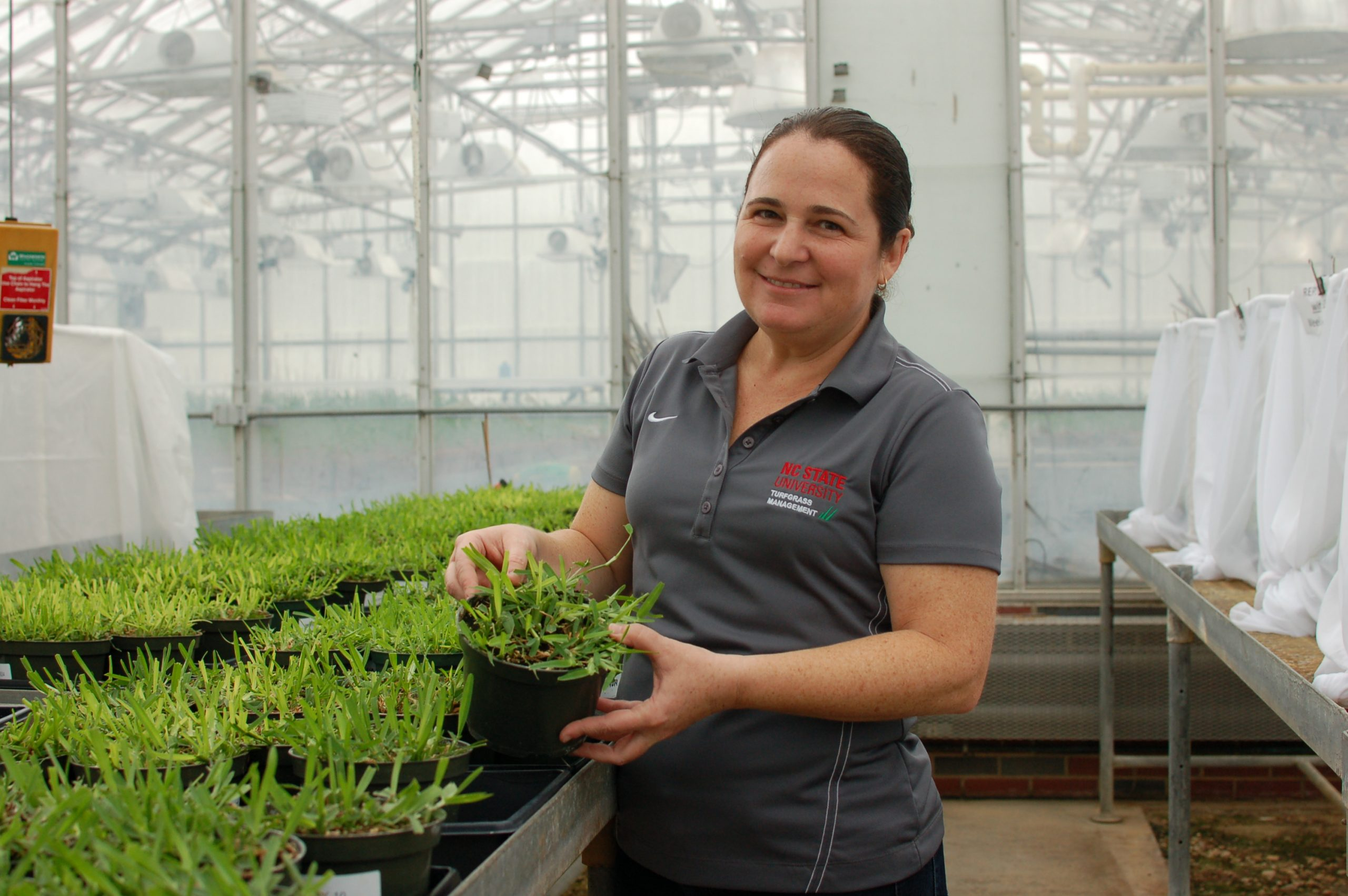 Woman holds up research plant in an NC State greenhouse