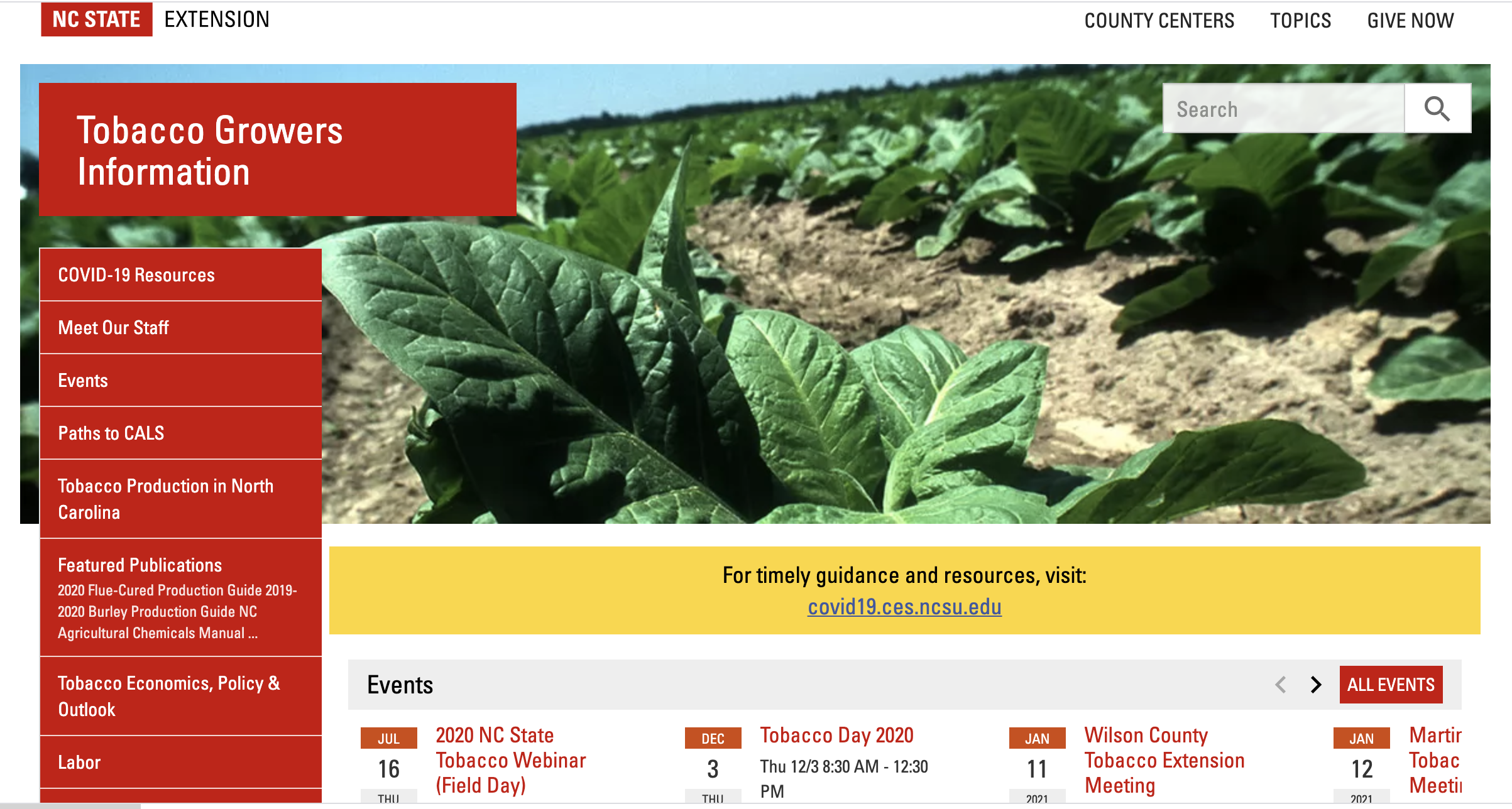 screen image of tobacco extension website