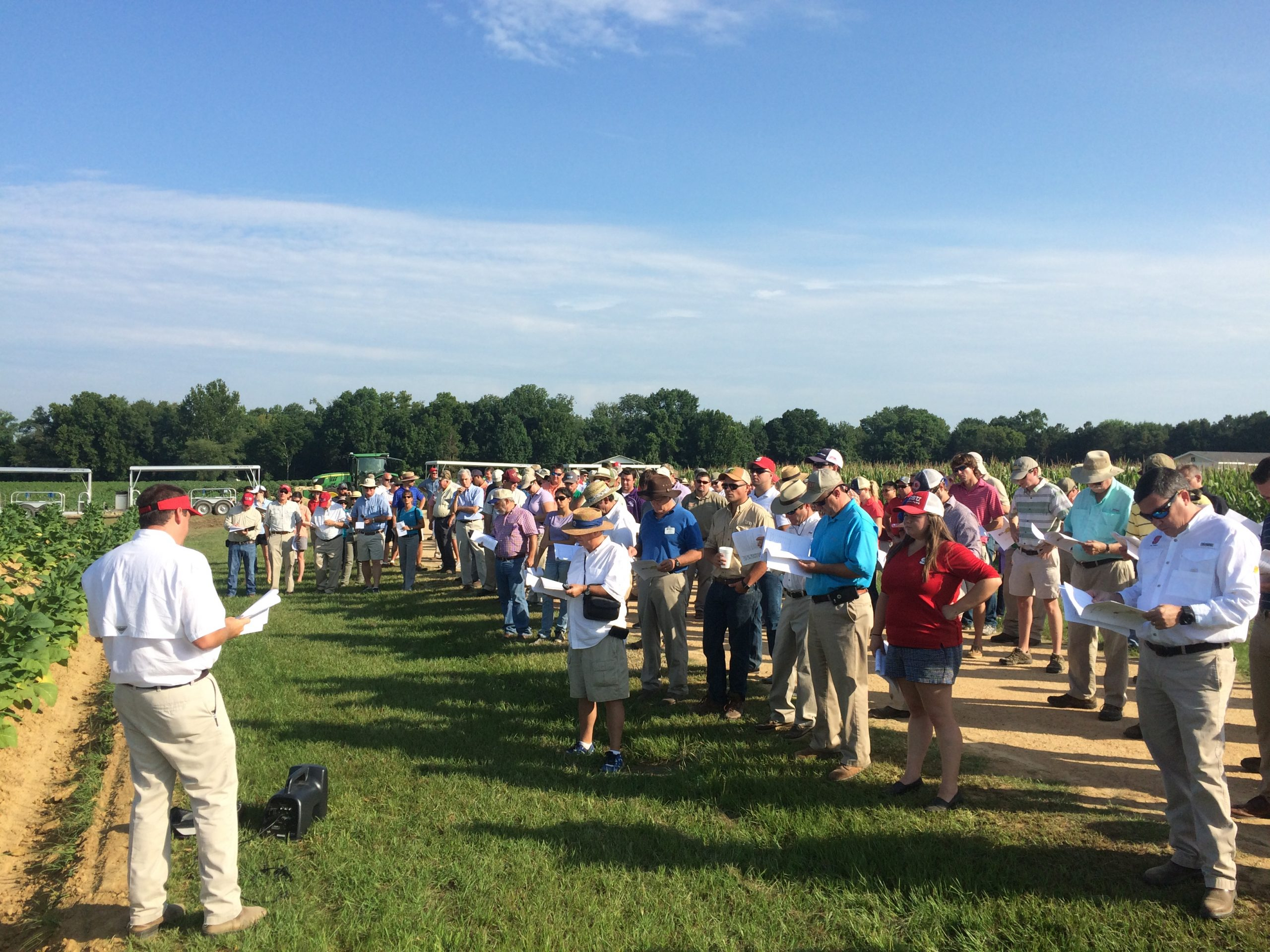 A crowd of people listen to agronomist at a tobacco field