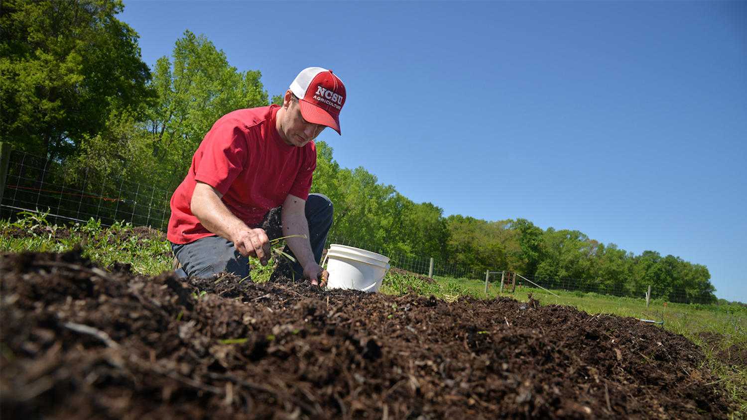 Student in red hat digs in garden soil