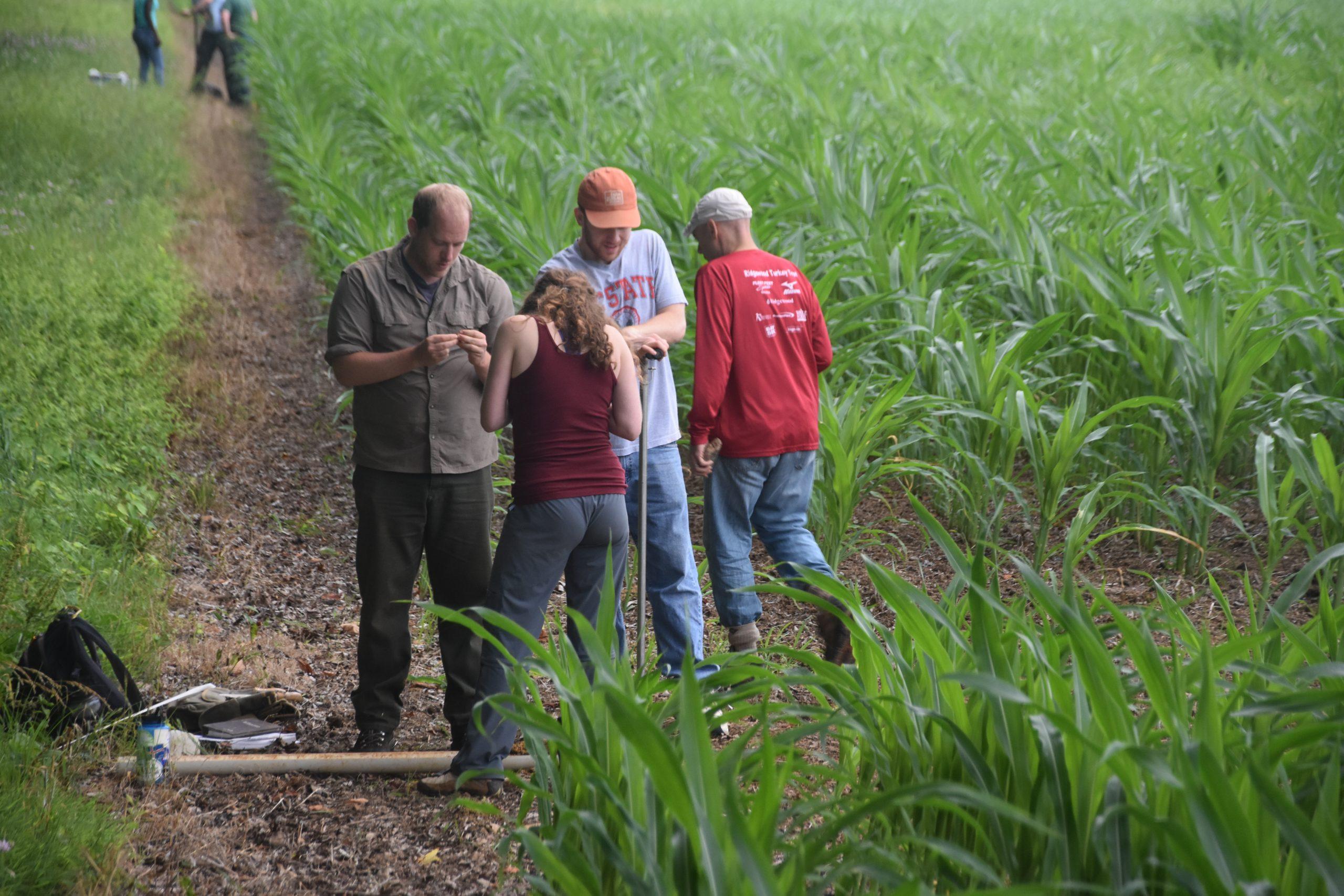 Soil researchers in the field