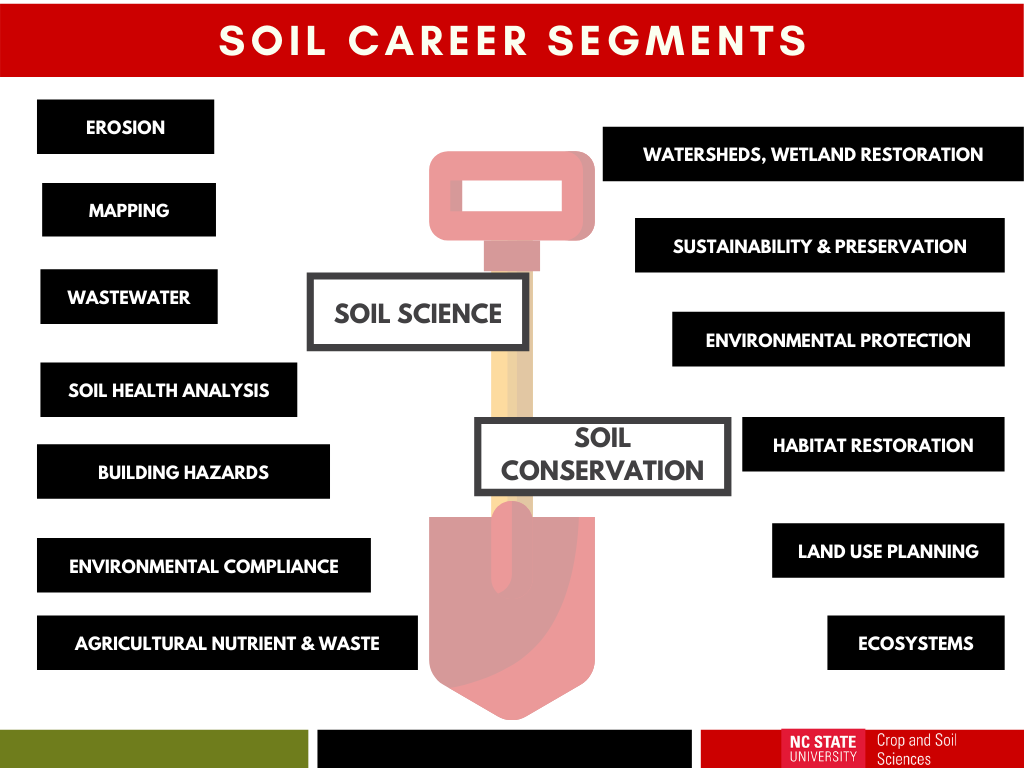 chart of soil career paths