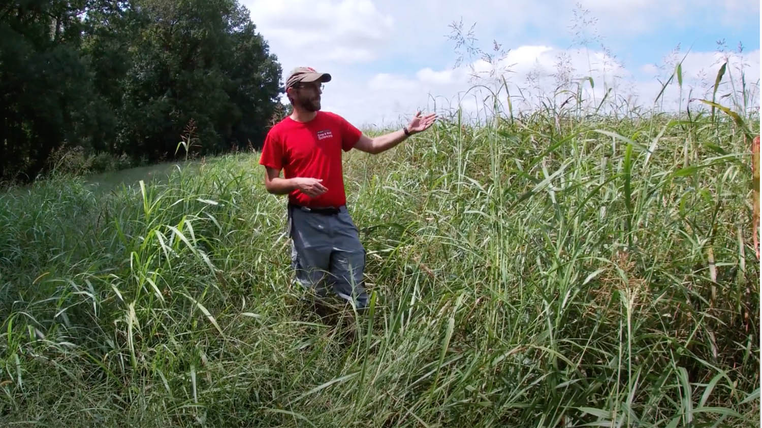 Man in red shirt standing on a grassy hill