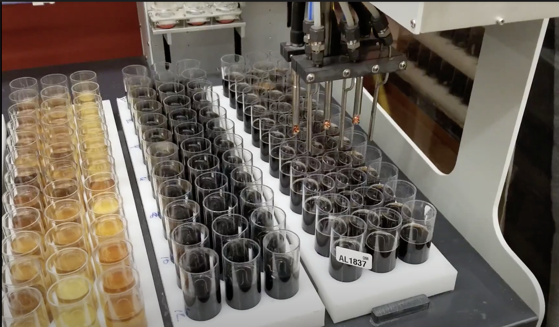 soil samples being tested at the NCDA lab.
