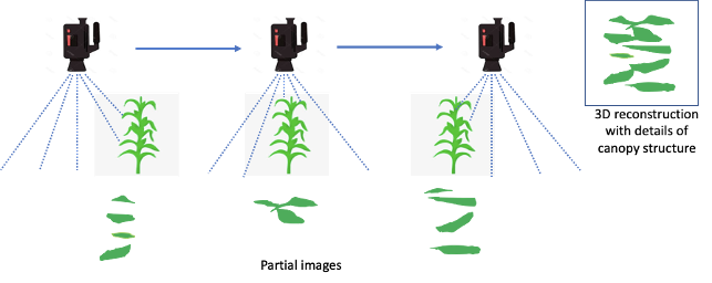 image classification diagram