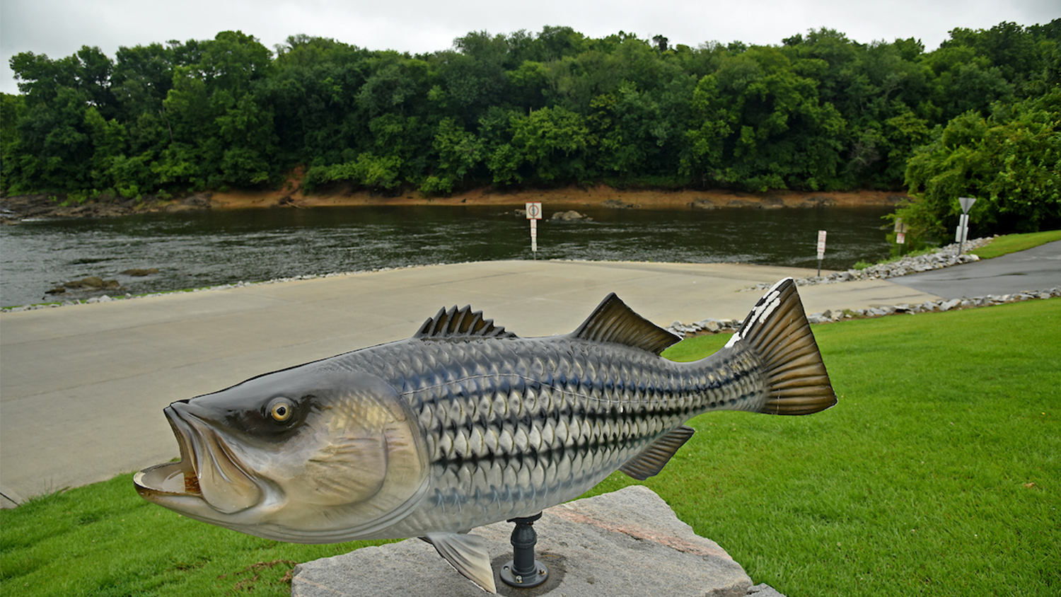 Fish statue at NC's Roanoke River Park