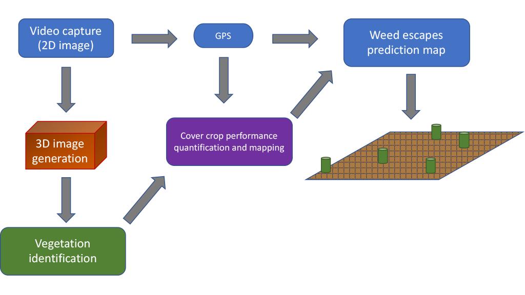 computer system platform diagram