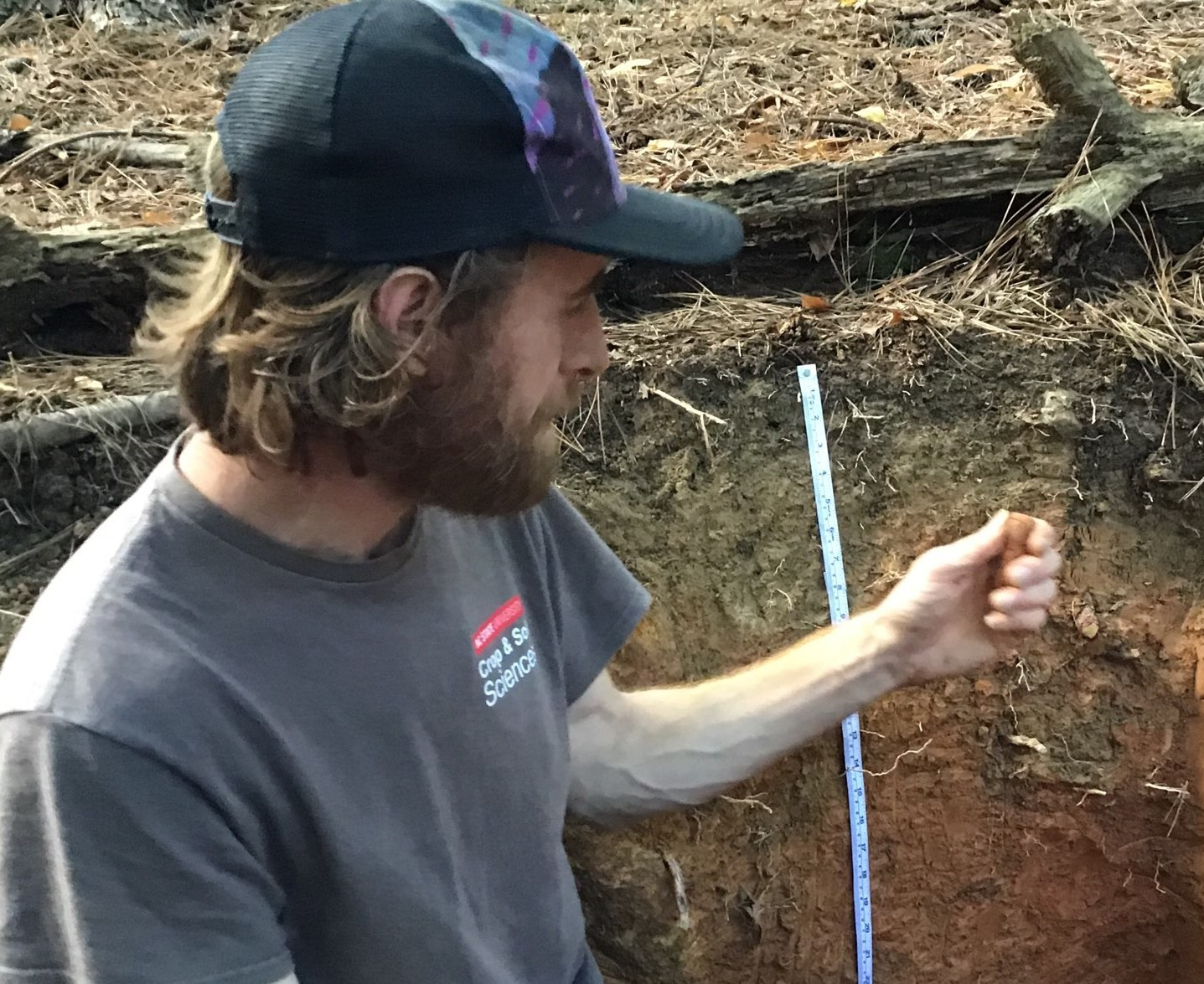 Man examines a soil sample for texture