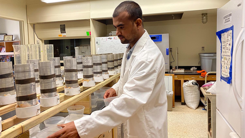 Man in a white lab coat handles soil samples