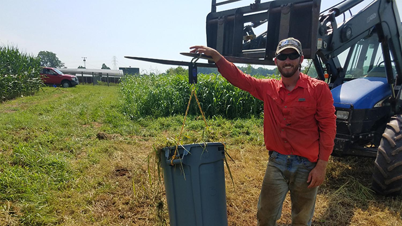 Man in a red shirt weighs bioenergy crop yield