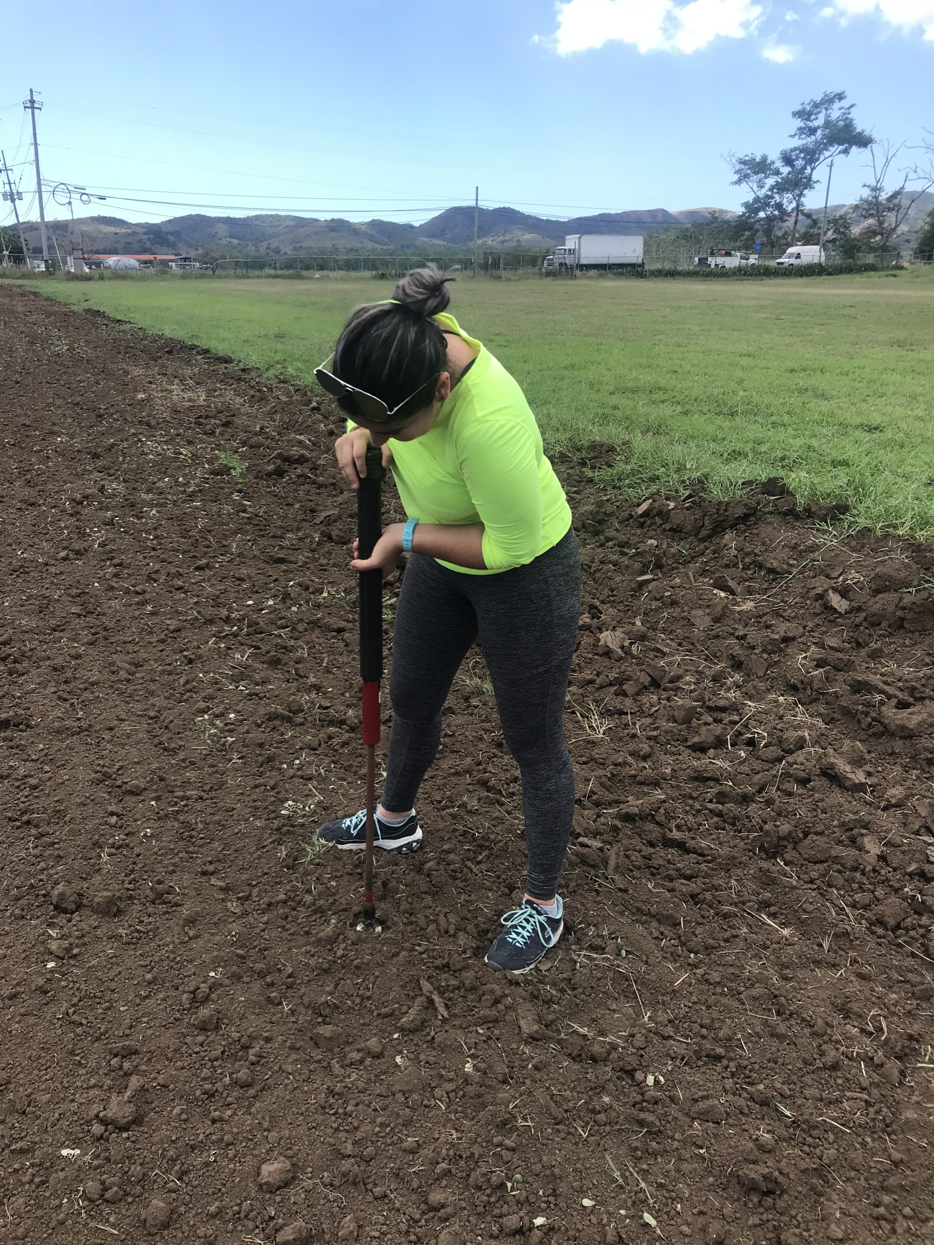 Woman in a yellow shirt digs in the soil