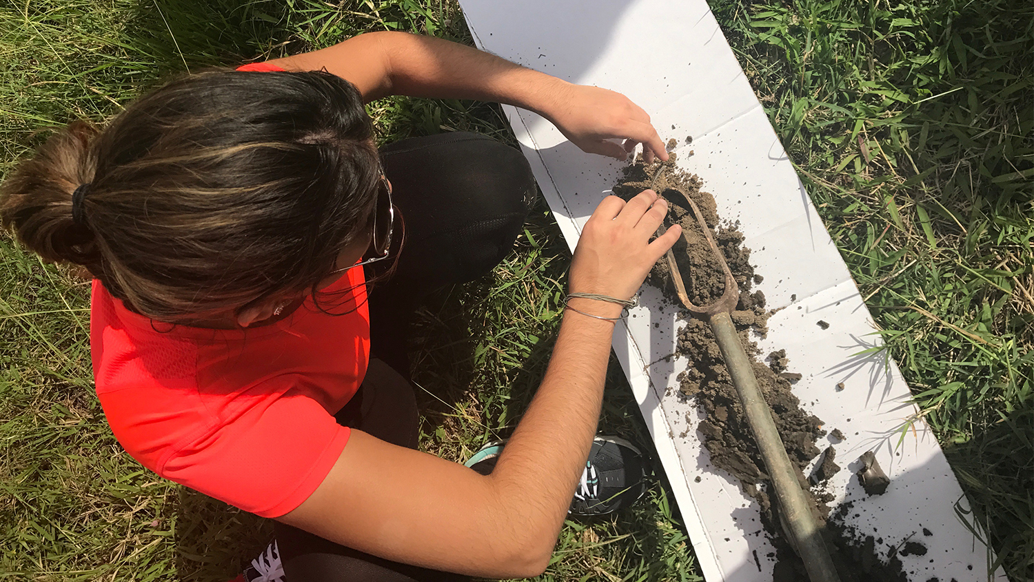 a graduate student in a red shirt takes a soil sample