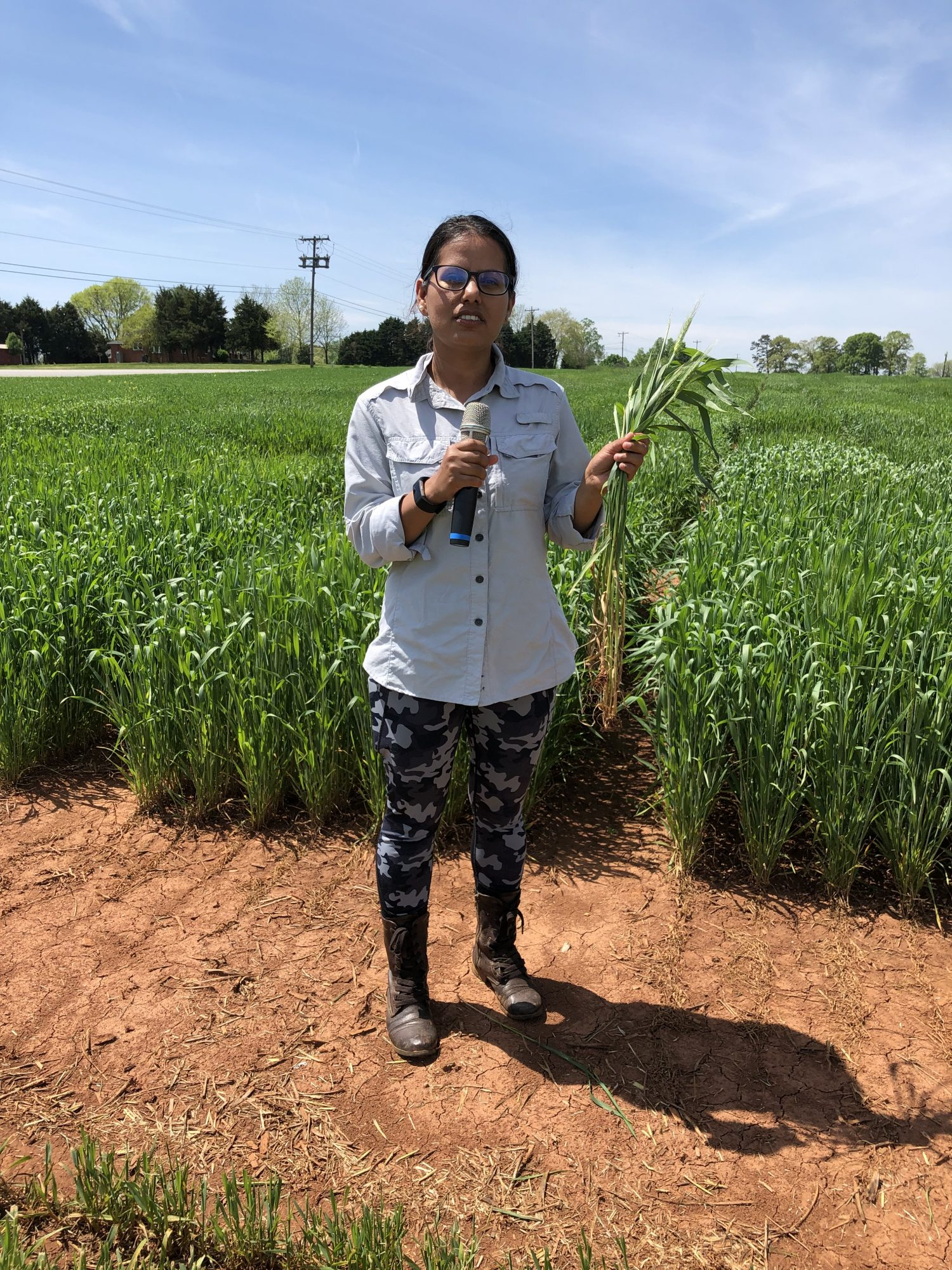 Urmilla is standing near the wheat and barley research plots of Dave Marshall.