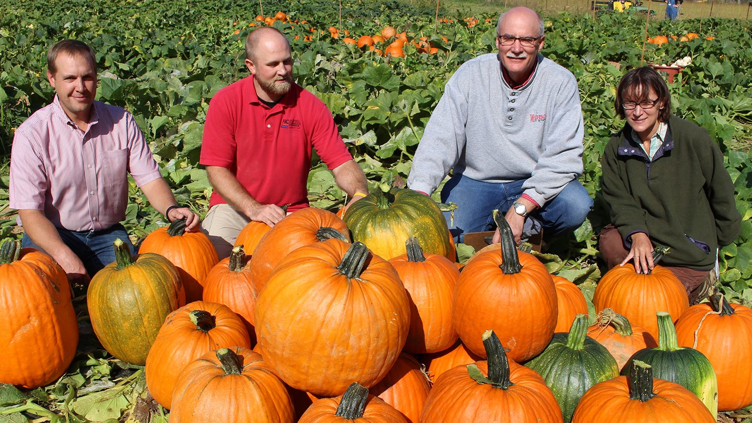 Kaleb Rathbone, Travis Birdsell, Jonathan Schultheis and Annette Wszelaki pose with pumpkins in a research station field.