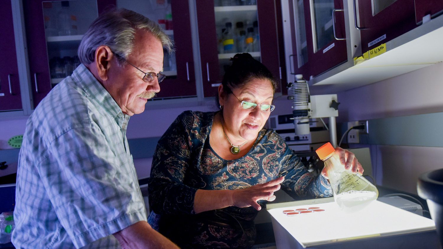 Drs. Dennis Brown and Raquel Hernandez of NC State's CALS are testing a lifelong vaccine to the Zika virus.