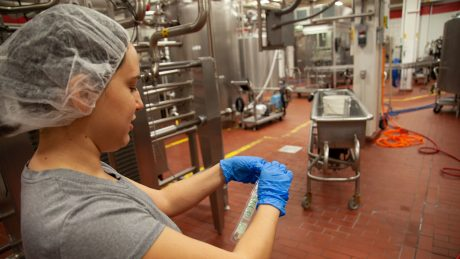 A woman begins the process of taking a pathogen sample at a dairy processing facility