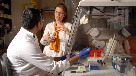 Lee-Ann Jaykus discusses research work with a grad student in her Schaub Hall lab