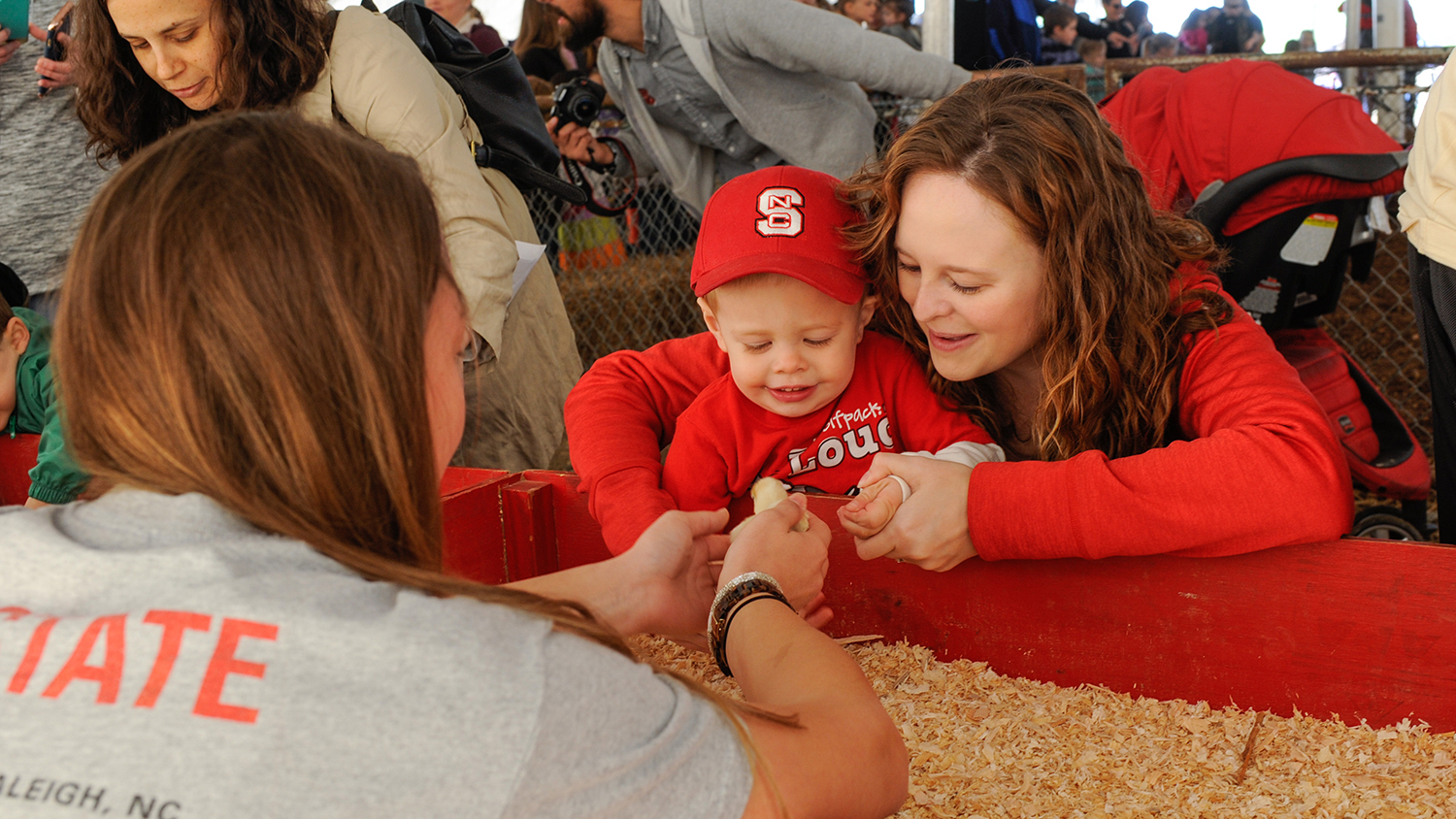 NC State student shows young boy a chick.