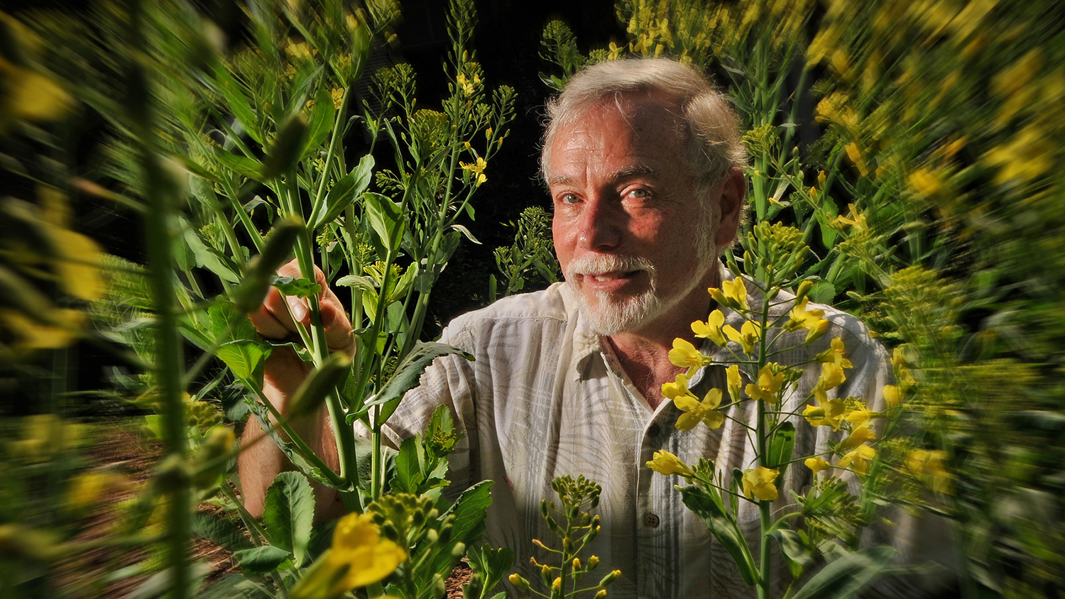 Fred Gould in his garden