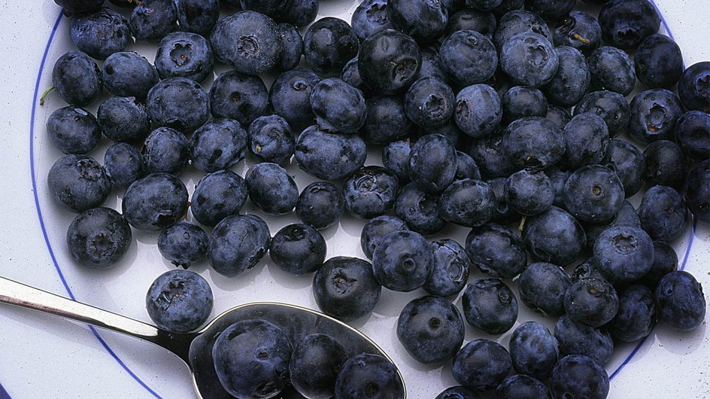 Blueberries (on a plate)