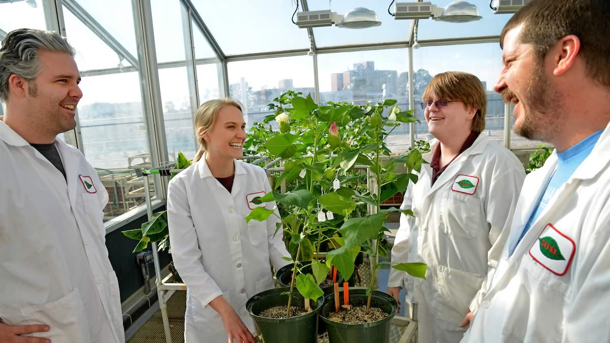 NCState Phytotron