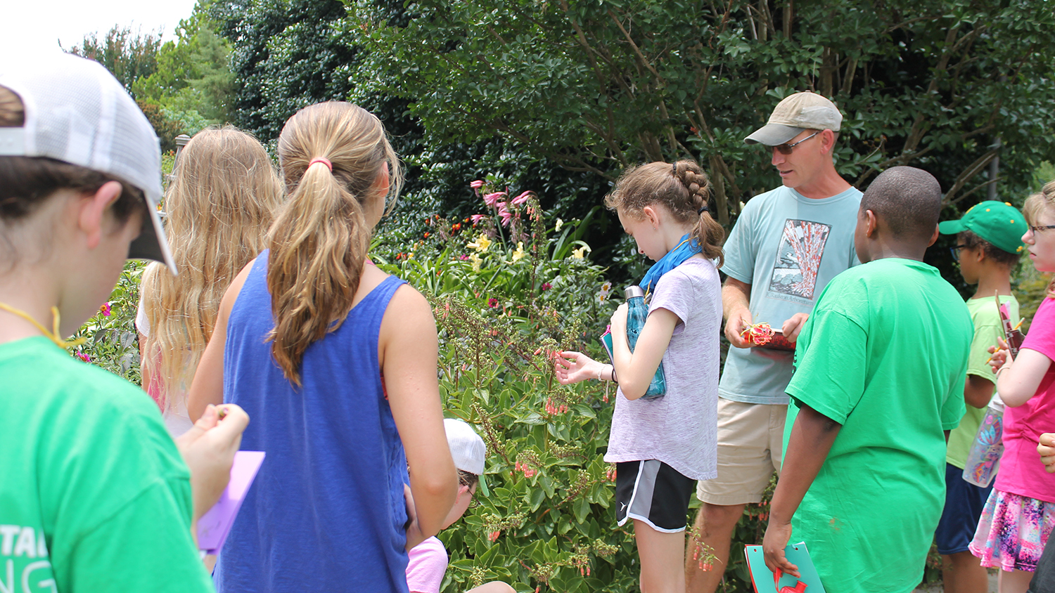 Middle school students examine pollinating plants.