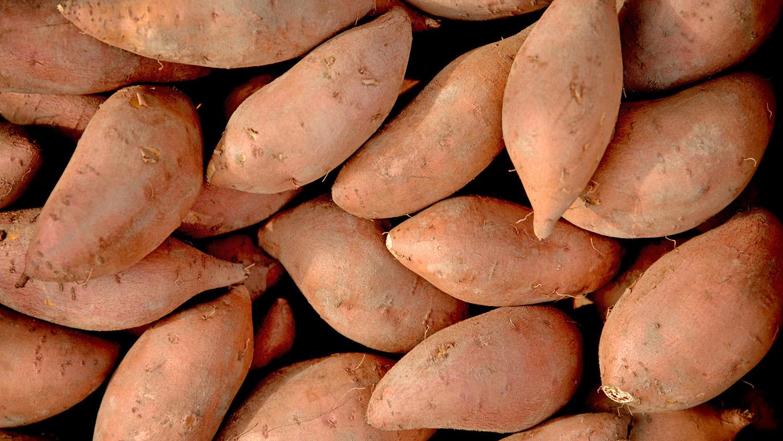 A bunch of sweetpotatoes
