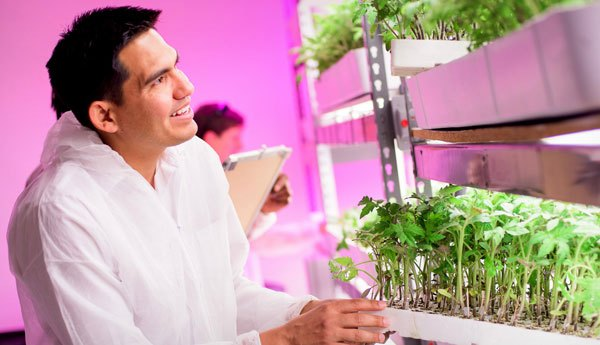 Dr. Ricardo Hernandez, Control Environment Agriculture faculty